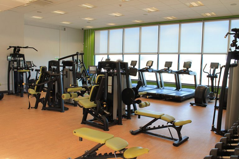 Treadmills with an outdoor view and weights equipment